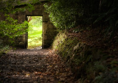 Narrow-Gate